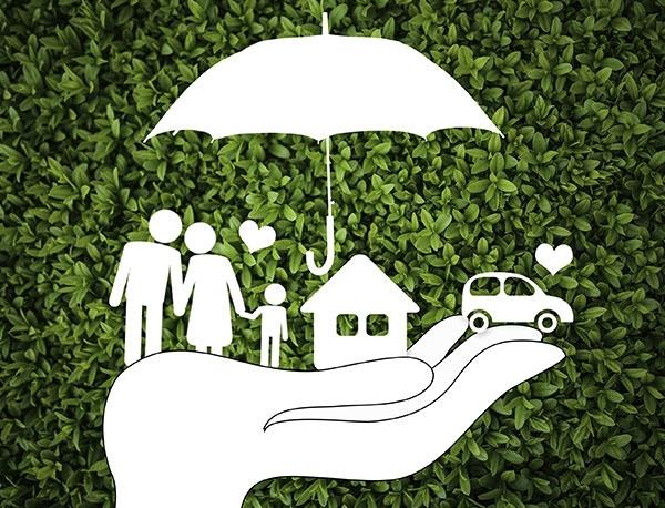 环保税、环保强制保险代理