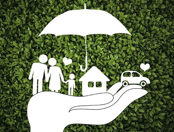 环保税环保强制保险代理