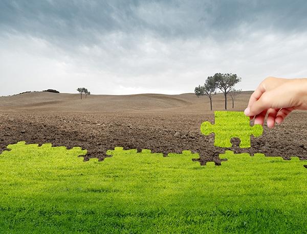 土壤污染调查与修复